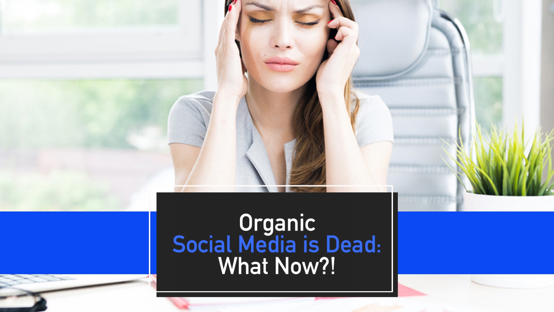 Organic Social Media is Dead – What Now!?